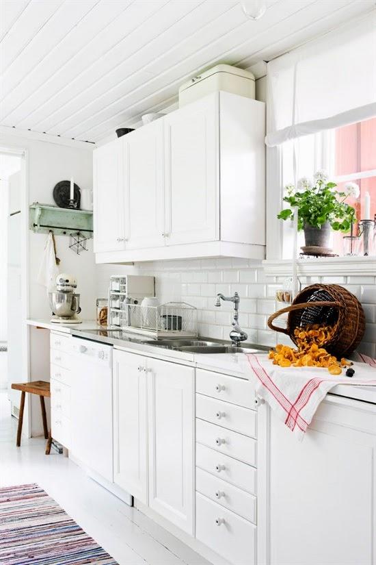 Charming-Swedish-house-2[1]