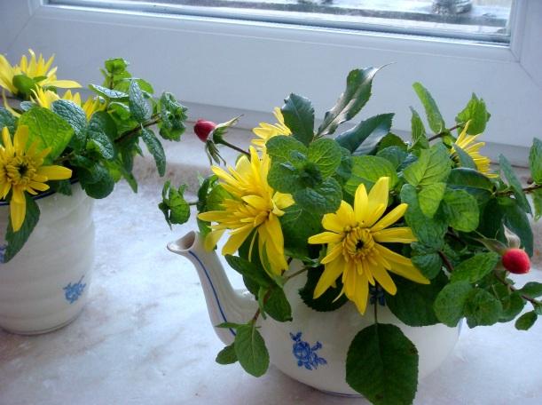 flores Natal