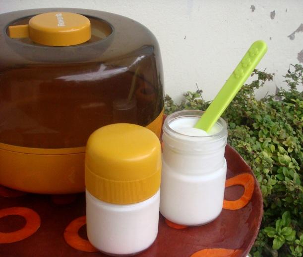 iogurteira