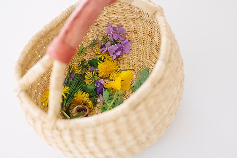 apanhar flores