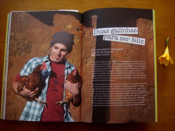galinhas do livro