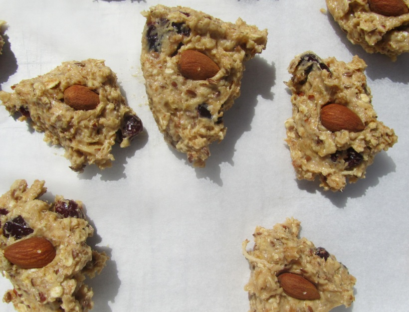 Biscoitos de mirtilos antes de cozer