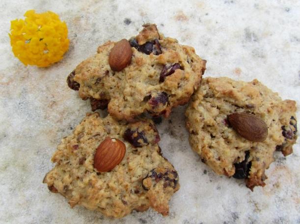 Biscoitos de mirtilos cozidos