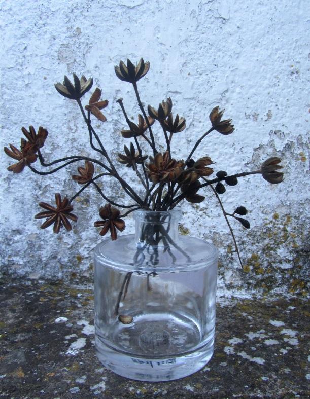 cápsulas de flores de esteva
