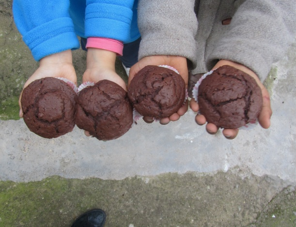 muffin cacau.jpg