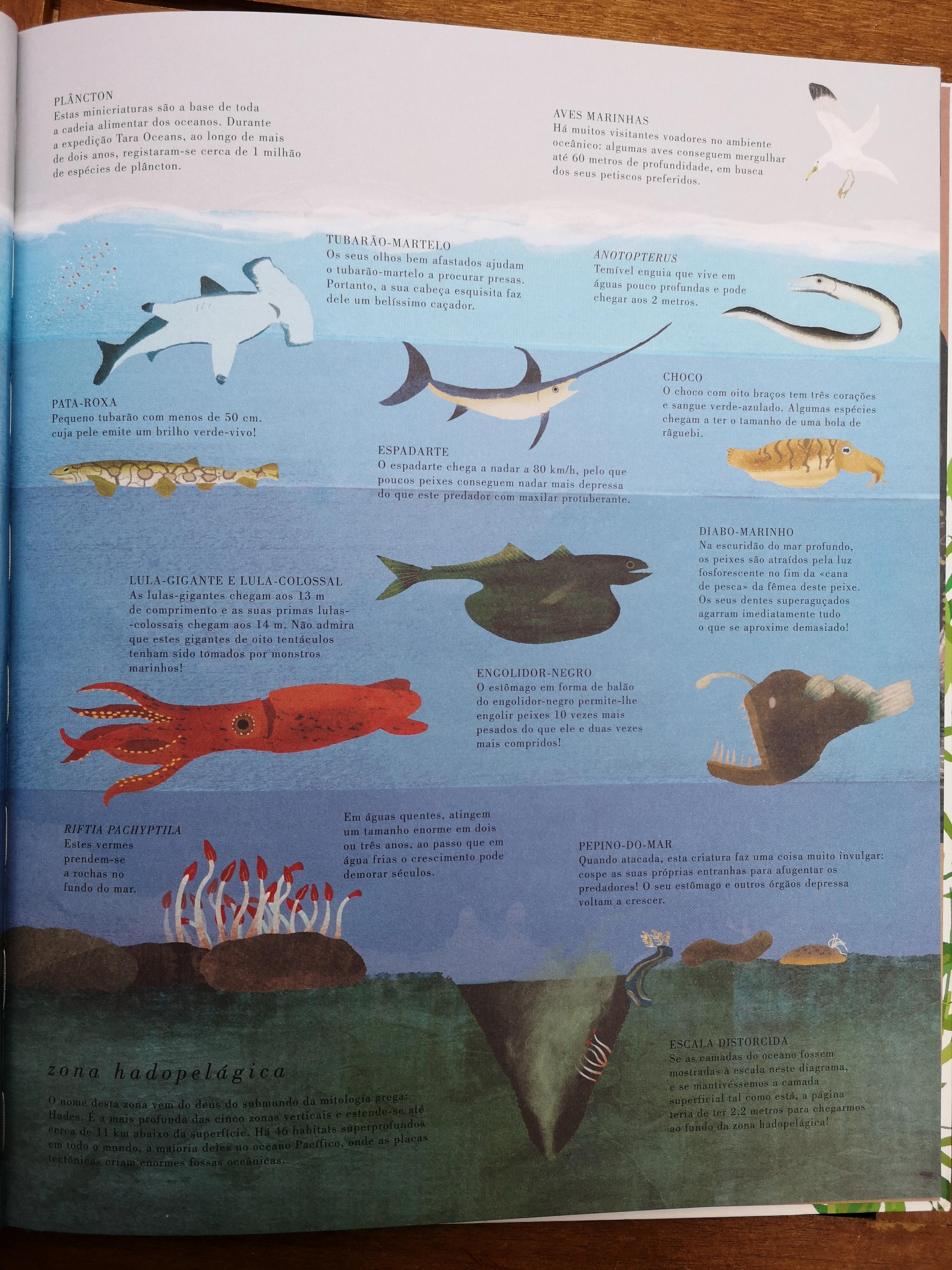 O livro da Terra Mar